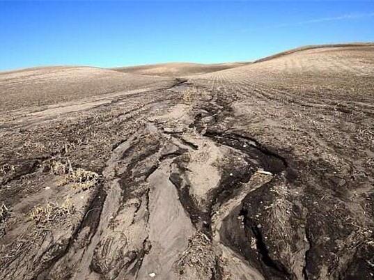 Con người gây xói mòn đất từ 4000 năm về trước