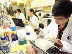 Khối đại học đứng đầu về tiềm năng nghiên cứu ở Việt Nam