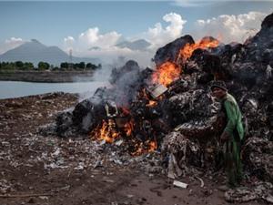 Indonesia: Trứng gà nuôi thả gần các địa điểm tích tụ rác thải nhựa có hàm lượng dioxin đáng báo động