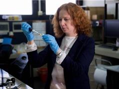 Công nghệ mới truyền thuốc trực tiếp vào não cho bệnh nhân Alzheimer
