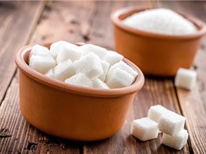Nuôi vi khuẩn để sản xuất đường tốt cho răng và người tiểu đường