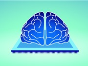 Các nhà khoa học phát triển thành công khớp thần kinh điện tử, dạy máy tính tự quên những thứ cần phải quên