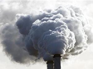 Phát triển được hợp chất hấp thụ các chất ô nhiễm từ không khí
