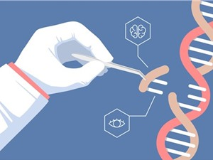 Công nghệ chỉnh sửa gene thắp hy vọng cho nhiều bệnh nhân