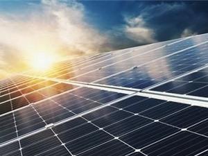 Lấy cảm hứng từ lá sen để làm sạch bụi trên các tấm pin mặt trời