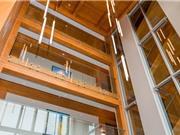 Xây dựng bằng gỗ giúp giảm khí nhà kính