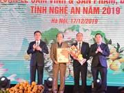Trao giấy chứng nhận chỉ dẫn địa lý cho sản phẩm gừng Kỳ Sơn