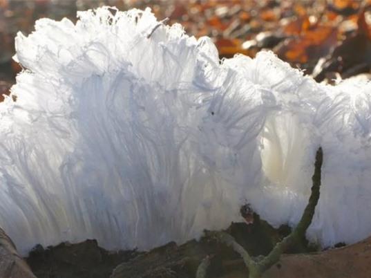 Tìm hiểu hiện tượng băng sợi