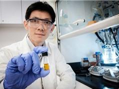 Công nghệ mới phân hủy nhựa bằng ánh sáng Mặt trời