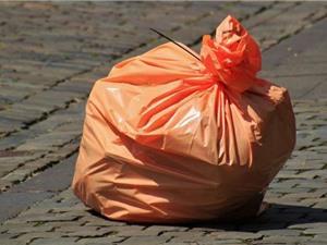 Sâu bột giải quyết vấn đề rác thải nhựa