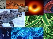 Dấu ấn khoa học nổi bật năm 2019