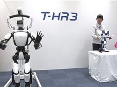 Robot - Bạn đồng hành lý tưởng cho người cao tuổi
