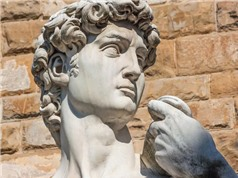 Một góc nhìn y học thú vị về tượng David