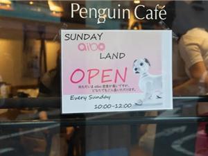 Tiệm cafe cho chó robot ở Nhật