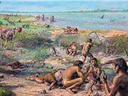 Tìm thấy dấu vết tinh bột trong thức ăn của người cổ đại