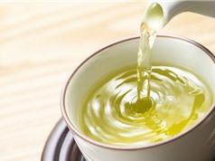 Nghiên cứu: Thường xuyên uống trà giúp sống thọ thêm gần 2 năm so với không uống