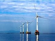 Đầu tư năng lượng tái tạo chững lại trên toàn cầu