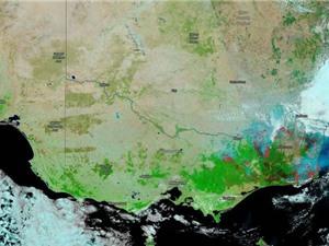 Khói cháy rừng ở Úc lan khắp toàn cầu