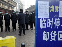 Virus ở Vũ Hán lây lan nhanh như thế nào?