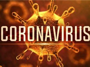 Virus, Dịch bệnh và Nghiên cứu vaccine