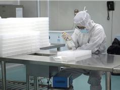 Các phòng thí nghiệm trên toàn thế giới gấp rút phân tích mẫu nCoV