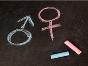 Đã có bản tiếng Việt của Bộ hướng dẫn SAGER về giới và giới tính trong nghiên cứu