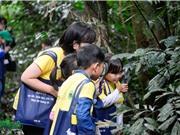 Giáo dục môi trường ở Việt Nam: Những cánh rừng đã mở