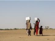 Khủng hoảng khí hậu làm gia tăng bạo lực đối với phụ nữ