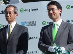 Nhật Bản đầu tư nuôi vi tảo euglena tại Indonesia và Columbia