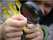 Rèn nếp tư duy: Công cụ học tập quan trọng nhất của học sinh