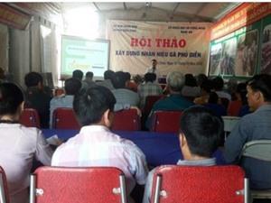 """Vấn đề xây dựng, quản lý và phát triển """"Nhãn hiệu chứng nhận gà Phủ Diễn'' trên địa bàn huyện Diễn Châu"""