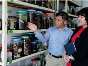 PGS.TS Vũ Đình Thống: Nghiên cứu về dơi giúp chúng ta hiểu hơn về những bệnh truyền nhiễm từ dơi sang người