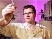 Biến dầu chiên thành mực in 3D