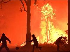 Biến đổi khí hậu làm tăng 30% nguy cơ cháy rừng ở Úc