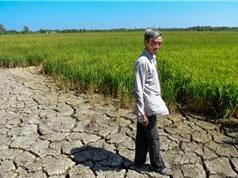 Ứng phó khủng hoảng khí hậu: Thế giới không theo kịp mục tiêu