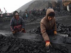 Đầu tư vào điện than đang thua lỗ