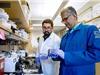 Thận nhân tạo và thiết bị lọc máu thu nhỏ có thể cứu sống hàng triệu người