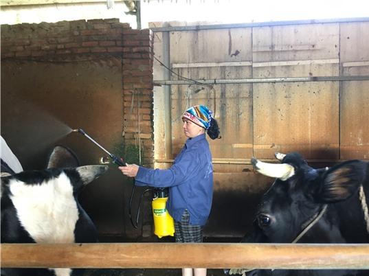 Xử lý chất thải chăn nuôi: Công nghệ chỉ là bước khởi đầu
