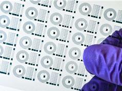 In 3D mô cấy ghép não bằng polyme dẫn điện