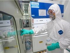 Các viện nghiên cứu của Vingroup dừng mọi việc để tập trung sản xuất máy thở