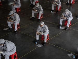 Trung Quốc đã trở lại bình thường chưa?