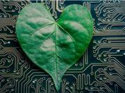Từ trái phiếu xanh đến cuộc cách mạng bền vững trên thị trường vốn
