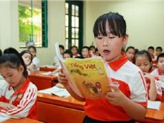 Chữ Việt Nam song song 4.0: Không có cơ sở khoa học và không nên phổ biến