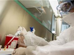 Argentina giải mã thành công bộ gene của virus SARS CoV-2