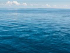 Đại dương hấp thụ nhiều CO2 hơn chúng ta nghĩ