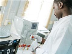 Khoa học Châu Phi: Không trông chờ nhiều vào bên ngoài