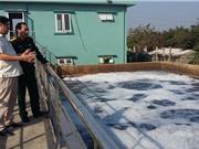 Giải pháp xử lý nước thải công nghiệp bằng nano sắt hóa trị 0