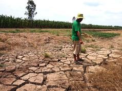 Môi trường sống của gần 1/3 loài người có nguy cơ nóng như sa mạc Sahara