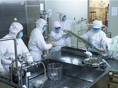 Vaccine Covid-19: Việt Nam tìm nghiệm bài toán khó