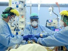 Giải phẫu sát thủ virus corona